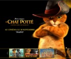 Le Chat Potté : le film